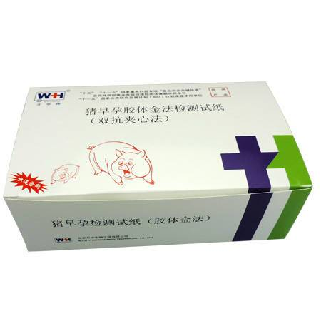 Pig urine pregnancy test