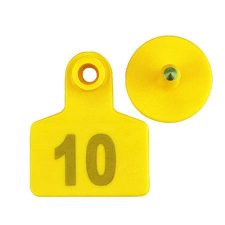 pig ear tags with number