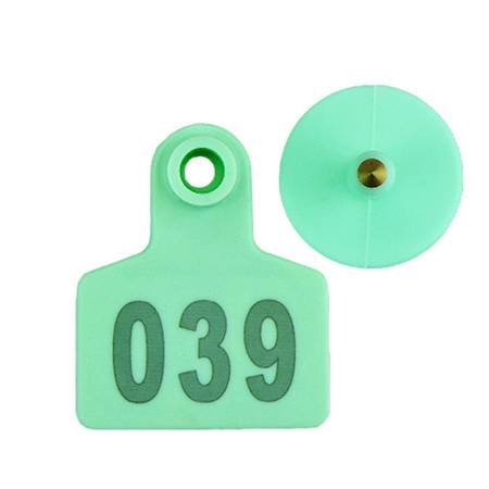 green pig ear tags