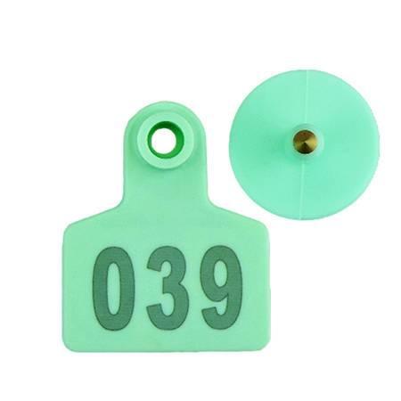 green pig ear tags