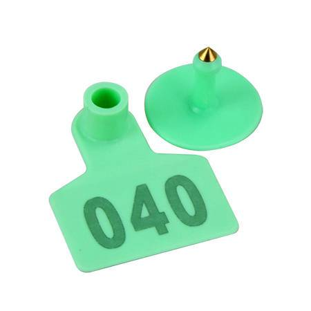 Pig ear tag with number